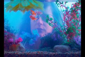 DHF2021-film-oblaci_su_daleko