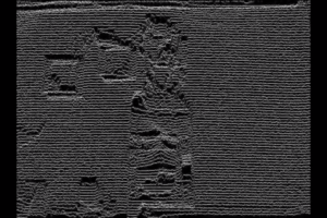 DHF2021-film-plejade